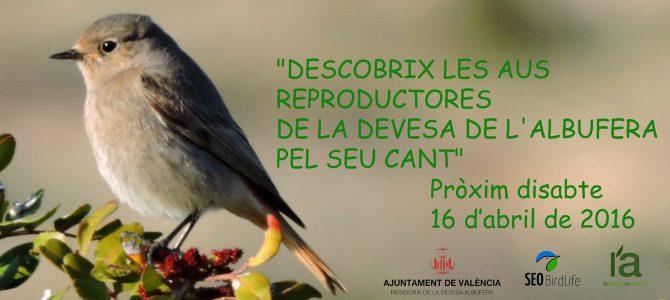 Descobrix a les aus reproductores de la Devesa de l'Albufera pel seu cant
