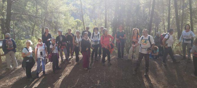 Fotos excursió Titaguas